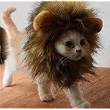 Bello Luna Süße Löwenkostüm, Löwenmähne mit Ohren für Katzen, Kleine Hunde Oder Welpen, für Halloween, Partys, Feste-Größe Passend für Haustiere mit Einem Halsumfang von 26 bis 30 cm