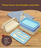 Win-Y Lunchbox aus Weizenstroh Brotdose mweltfreundlichem biologisch abbaubarem Bentobox Für Erwachsene und Kinder (Blau)
