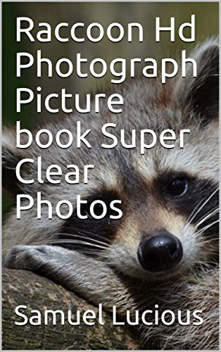 (Raccoon Hd Photograph Picture book Super Clear Photos (English Edition))