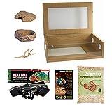 Corn Snake Starter Kit - Medium Vivarium (24')
