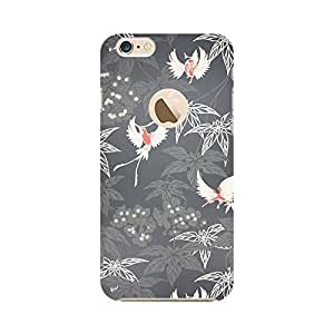 RAYITE Beautiful Birds Premium Printed Mobile Back Case Cover For Apple iPhone 6-6s with Apple hole
