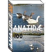 Anatidæ (100 imágenes)