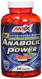 Amix Anabolic Power Rribusten Estimulantes / Precursores - 20 gr__8594159532458