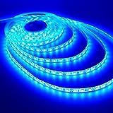 Lance Retail (TM) 10meter BLUE Waterproof Flexible LED strips+ 2 Adapter DC 12V, Multipurpose Decorative Light(SMD2835/3528)