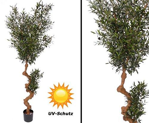 MITIMPORT - Oliven Kunstbaum für Draußen, 3952 Blätter UV-safe, Höhe ca. 180cm - Kunstbäume Kunstbaum künstliche Bäume Kunstpflanzen Kunstpalmen Dekopalmen