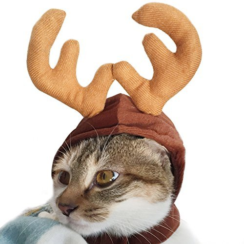 wildforlife Halloween Pet Cute Rentier Kostüm Hat für Katzen und kleine - Wilde Katze Halloween Kostüm