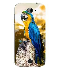 Citydreamz Blue Bird\Parrot\jungle Hard Polycarbonate Designer Back Case Cover For Acer Liquid Z530