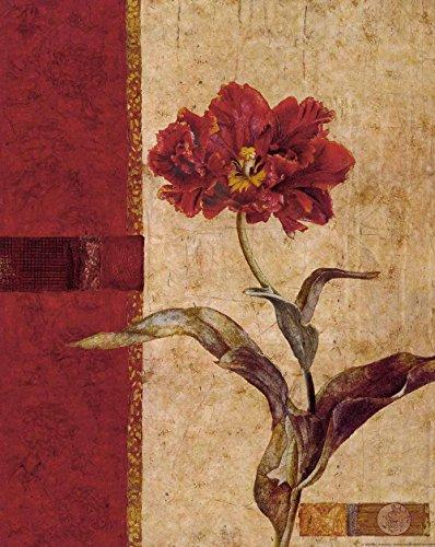 Cuadro sobre Lienzo – Peony Stamp Ii Pinturas Flores Vintage Pared Impresións – 40X50 cm