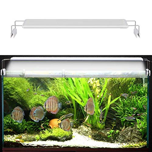 Aquarium Licht Aquarium Kapuze Led Beleuchtung Mit Weiß Blau,White,A400 -