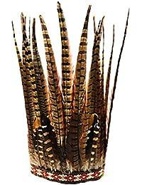 TOYMYTOY Diadema de plumas Accesorios de pelo del tocado de pluma del headwear del traje de la venda de la pluma de la vendimia para las funcionamientos de la fiesta del festival