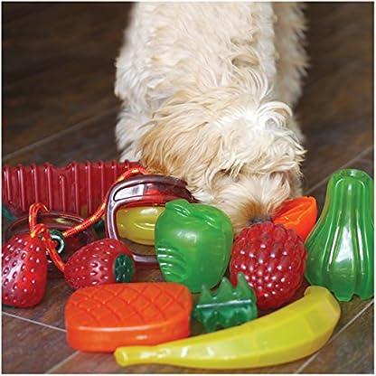 Rosewood Apple BioSafe Dog Toy 3
