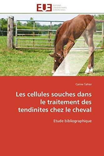 Les cellules souches dans le traitement des tendinites chez le cheval