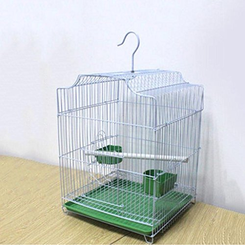 Liuyu · Casa de la Vida Loro Jaula Zorzal Grackle Munia 33 * 30 * 40cm (Color : Blanco, Tamaño : Birdcage+Swing)
