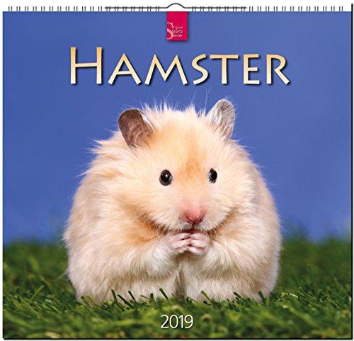 MF-Kalender HAMSTER 2019