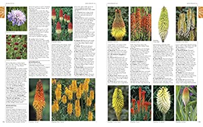 RHS A-Z Encyclopedia of Garden Plants 4th edition by DK