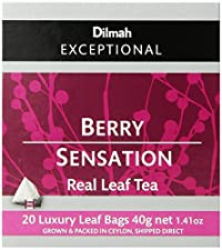 Dilmah Exceptional Leaf Berry Sensation, 20 Tea Bags, 1.41-Ounce Boxes (Pack of 6)