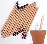 Eco-Sprossensamen Bleistift Bleistift 8 Stangen/Karton sprießen Töpfe wunderbare DIY Geburtstagsgeschenk