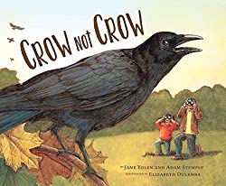 Crow Not Crow