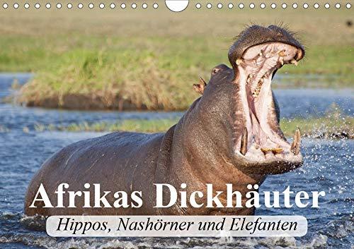 Afrikas Dickhäuter. Hippos, Nashörner und Elefanten (Wandkalender 2020 DIN A4 quer): Afrikas...