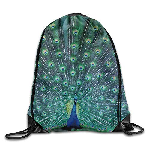 uykjuykj Tunnelzug Rucksäcke, Drawstring Backpack Kids Adults Waterproof Bag for Gym Traveling Peacock Feather Lightweight Unique 17x14 IN (Billig Peacock Feathers)