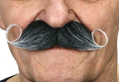Moustache impériale poivre et sel (2 pièces)