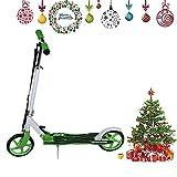 Blackpoolal Klappbar Big Wheel Scooter Kinderroller Kickscooter Roller Tretroller Cityroller Kickroller für Erwachsene und Kinder bis 120 kg (Grün)