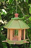 Vogelhaus,Futterhaus-Futterstation,mit / Beleuchtung Garten,wetterfest (GRÜN) PURE GREEN,gras Futterfläche + Dach, für Vögel,WINTERFEST-mit Vogelfutter-Station Farbe grasgrün grün kräftig tannengrün/natur,Naturholz,Vollholz