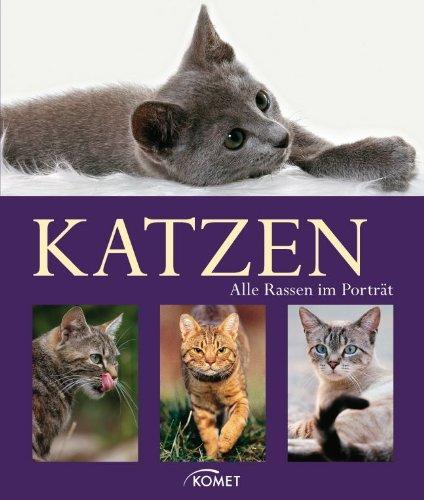 Katzen: Alle Rassen im Porträt