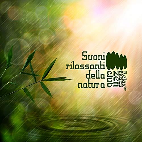 Suoni rilassanti della natura - Musica strumentale per spa, Benessere, Musicoterapia, Suoni per dormire