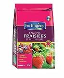 Engrais granulés pour fraisiers et petits fruits 800g Fertiligène