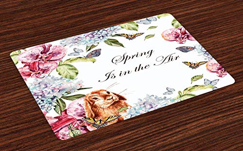 Muccum Spring Place Mats Set of 4 Hyacintha Flowers Rabbits Orchid Butterfly Leaves Botany Bouquet Watercolor Art Washable Fabric Placemats for Dining Room Kitchen Table Decor Multicolor -