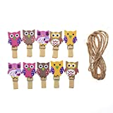 Wicemoon 10 x Pinces en bois Mini Bois Vêtements Clip Creative Motif chouette Décoration Bois Clip Photo Craft Clips Clips fermoirs avec corde de chanvre