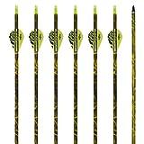 Flèches et Arcs Carbone Mixte 31 pouces Archery sharly, Tir à l'Arc, Sports et loisirs, Plumes en plastique, Flèches pour la pratique extérieure et la chasse, Couleur camouflage, 12 pcs