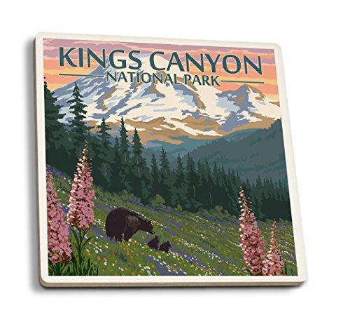 Kings Canyon National Park-Bear Family und spring flowers, keramik, mehrfarbig, 4 Coaster Set - Canyon Keramik