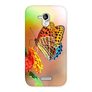 Special Queen Butterfly Back Case Cover for Micromax Canvas HD A116