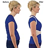 #2: Buyerzone Royal posture back supported (L \ XXL Size) (XX Large`)