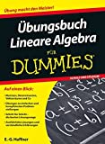 Übungsbuch Lineare Algebra für Dummies - E. G. Haffner