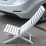 MXXYZ Chaise Pliante Chaises empilables Plage Salon Chaise en Bois Massif en Plein...