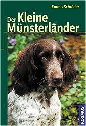 Der kleine Münsterländer