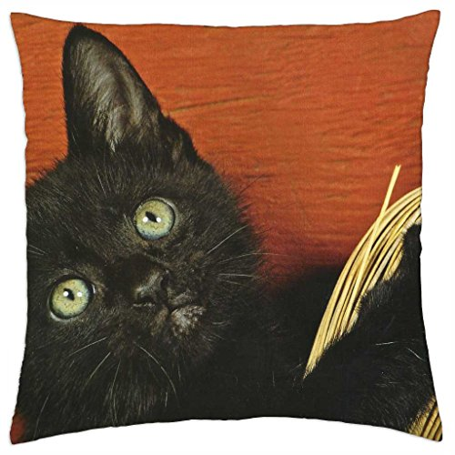 A black cat with a broom - Throw Pillow Cover Case (18 - Cat Broom