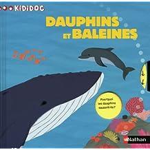 N41 - DAUPHINS ET BALEINES