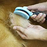 [Aktualisierte Version] celemoon abgerundeten Neddles Sicher Pet Zupfbürste Fellpflege Bürste Pet Massage Kamm für Hunde & Katzen mit langem Haar -
