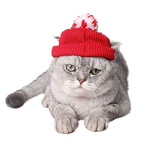TKHCOLDM Cappello da Cucciolo Invernale Gatto Rosso con Cappello di Lana e Copricapo Cappello da Babbo Natale con 14cmT3 di Palle di Filato