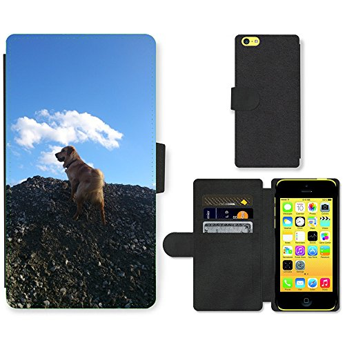 Just Mobile pour Hot Style Téléphone portable étui portefeuille en cuir PU avec fente pour carte//m00138915 Golden Retriever mâle Play Animal//Apple iPhone 5 C