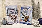 NIRV Adventure Bible Book of Devotions for Early Readers: Polar Exploration Edition: 365 Days of Adventure - 10