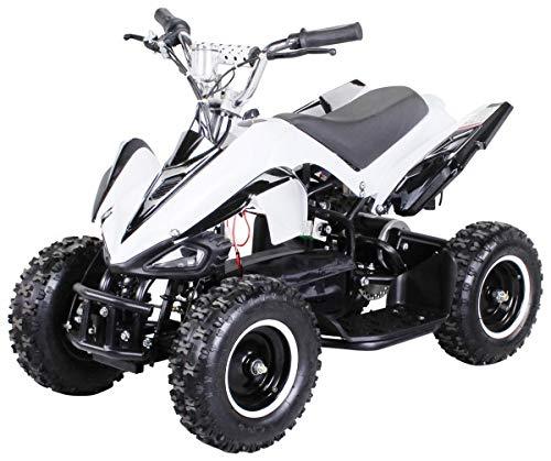 Actionbikes Motors Mini Elektro Kinder Racer 800 Watt ATV Pocket Quad Kinderquad Kinderfahrzeug... (Weiß/Schwarz)