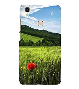 Red Flower in Fields 3D Hard Polycarbonate Designer Back Case Cover for vivo V3