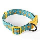 sPETyle Collar de poliéster Básico para para Gatos y Perros de Tamaño Pequeño, Medio y Grande(Plátano, Collar-S)