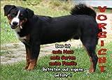 INDIGOS UG - Türschild FunSchild - SE124 DIN A4 ACHTUNG Hund APPENZELLER SENNENHUND - für Käfig, Zwinger, Haustier, Tür, Tier, Aquarium - aus hochwertigem Alu-Dibond beschriftet sehr stabil