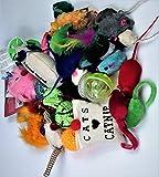 Unbekannt 25 teiliges Katzen Spielzeug Bälle Mäuse Catnip Katzenspielzeug...